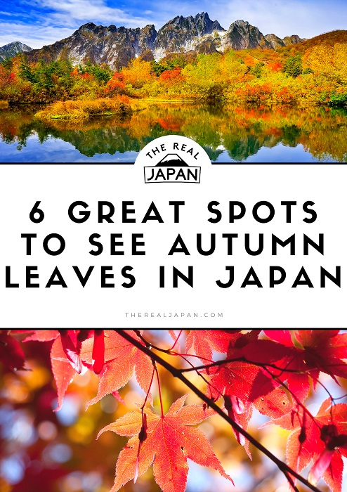 Great Spots to see Autumn Leaves in Japan The Real Japan Rob Dyer