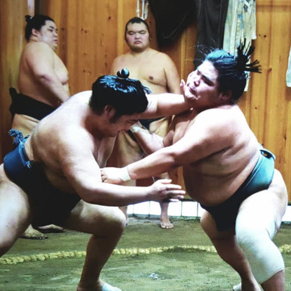 sumo training tour Top 10 most popular activities in Japan The Real Japan Rob Dyer